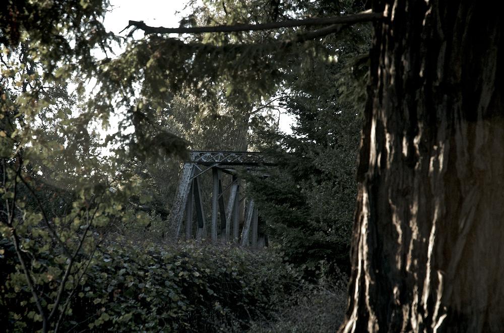 Jurassic bridge