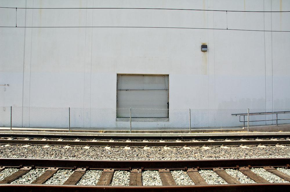 Vestigial door